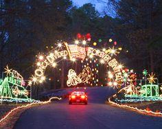Celebration in Lights at Newport News Park in Newport News, Virginia! http://www.nngov.com/parks-and-recreation/celebrationinlights