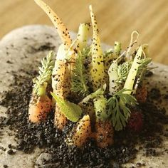 Noma Restaurant: best restaurant of the world since two years in a role.yes, you can eat it :-) Food Design, Restaurant Noma, Chefs, Danish Food, Molecular Gastronomy, Perfect Food, Food Presentation, Food Plating, Wine Recipes