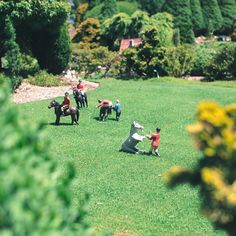 The miniature characters at Cockington Green Gardens are just delightful! Who are your favourites? Photo: Instagrammer amizo #visitcanberra