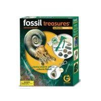 Excavation Kit Tesori Fossili - Novità  - Rocco Giocattoli Shop #giochieducativi #giochiinscatola #geoworld #geologo #fossili #giochiscientifici