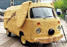VW B doggie
