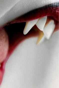 Dientes dientes