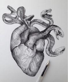 Medusas heart haha                                                       …
