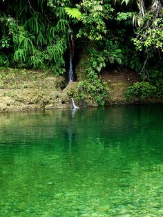 Reserva Natural San Cipriano, Buenaventura, Colombia Beautiful Places To Visit, Oh The Places You'll Go, Wonderful Places, Beautiful World, Places To Travel, Colombia Travel, Mexico Travel, Dream Vacations, Vacation Spots