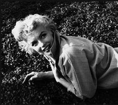 Annex  Monroe Marilyn