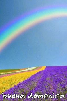Domenica❤ Happy Sunday, Country Roads, Mountains, Nature, Travel, Lavender, Google, Living Alone, Italian Quotes