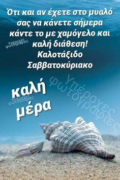 Good Night, Good Morning, Wish, Quotes, Nighty Night, Bom Dia, Quotations, Buen Dia, Have A Good Night