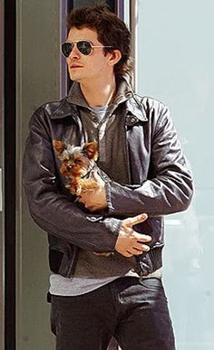 Orlando Bloom with super cute Yorkie.