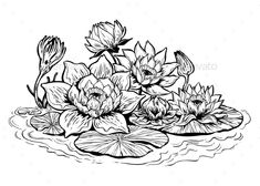 Buy Lotus Lily Water Flower Stems in Bloom by PhoenixNeon on GraphicRiver. A beautiful lotus lily water flower stems in bloom, Asian pond nature and botany. Lotus Drawing, Water Drawing, Floral Drawing, Flower Tattoo Hand, Flower Tattoo Designs, Dark Art Drawings, Outline Drawings, Bridge Drawing, Hand Painted Sarees