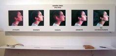 Guadalupe Aguiar - Historia Cínica (2005) - 200 cm. x 130 cm. x 25 cm San Juan/Argentina