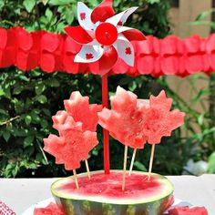 Patriotic Watermelon Pops for Canada Day totally making these this Canada day! My mom even bought a watermelon! Canada Day Party, Summer Parties, Holiday Parties, Summer Fun, Backyard Parties, Backyard Bar, Holiday Ideas, Happy Birthday Canada, Happy Canada Day