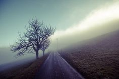 ungewiss Stock Foto, Winter, Country Roads, Photos, Mists, Landscape, Nature, Winter Fits, Winter Fashion