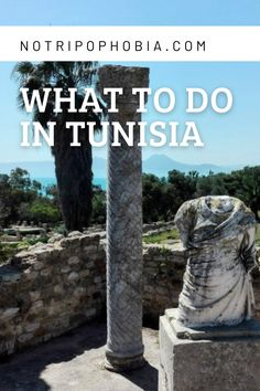 Tunisia is an amazing destination to visit with Roman ruins, beaches and charming towns! Best of all, it is just a short flight from Europe! Short Trip, North Africa, Amazing Destinations, Beaches, Garden Sculpture, Roman, Europe, Travel, Viajes