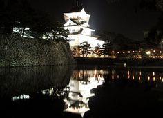 Toyama City's castle at night.