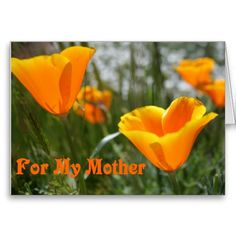 Poppies For My Mother Greeting Card