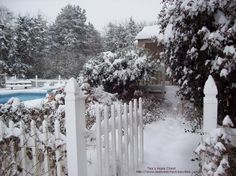 Winter snowfall leading to the pool