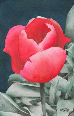 Ken Powers - Single Tulip