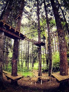 Tahoe Treetop Adventure Park Ropes Course Tahoe I Wanna