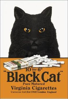 Vintage Black Cat Cigarettes