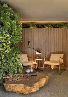 mf arquitetos tartuferia san paolo restaurant is filled with green space Spa Interior Design, Nachhaltiges Design, Interior And Exterior, Room Interior, Design Trends, Beautiful Interior Design, Design Ideas, Biophilic Architecture, Interior Architecture