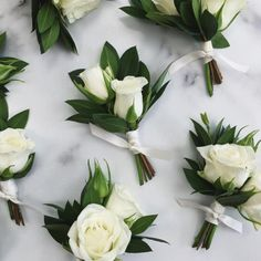 example of white spray roses in a boutonniere. could include one or two blooms. these also include a bit of greenery, but wouldn't have to. could keep them simple with just the bloom, or add a stem of something to trim such as sweet pea, astilbe, etc.