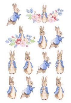 Peter Rabbit Party, Peter Rabbit Birthday, Peter Rabbit Tattoos, Coelho Peter, Beatrix Potter Illustrations, Lapin Art, Beatrice Potter, Rabbit Illustration, Garden Illustration