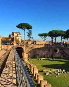 Hippodrome or viridarium palace of Domitian. Multiple stories the structure…