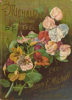 Michell's seed catalogue (1900) with an illustration of Michell's Sweet Peas and Nasturtiums.