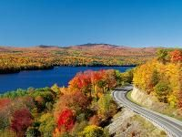Fall leaves -- one of my favorite things.