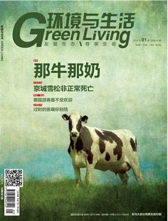 Chinese magazine | Flickr - Photo Sharing! My cow!