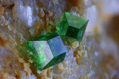 Zeunerite. Pret Basso quarry, Montoso, Bagnolo Piemonte. Cuneo Province, Piedmont, Italie FOV=1,75 mm Collection et photo Giuseppe Finello
