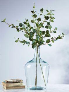 Hojas de eucalipto en botellón. Decoración sencilla