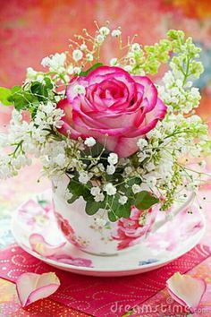 Pink rose and Baby's Breath in a teacup.