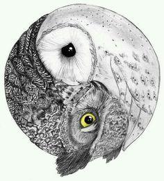 owl yin yang potential francesca tat