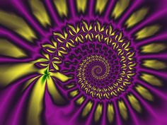 purple and yellow   walstraasart › Portfolio › The purple / yellow spiral
