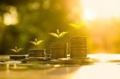New England Investment and Retirement Group offers a customized approach to wealth management services to optimize your return and save you time. #NEIRG