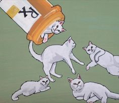 Prescription for happiness. =^..^= www.kittyprettygifts.com #cats #cute #lolcats #memes