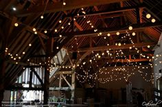 Festoon Lights Random Loops. Lighting by Oakwood Events.