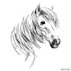 Illustration of Hand drawing horse head vector art, clipart and stock vectors. Horse Head Drawing, Horse Drawings, Animal Drawings, Painted Horses, Outline Drawings, Art Drawings, Horse Outline, Horse Sketch, Horse Illustration