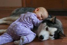 bébé et chien qui dort