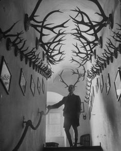 "Image: Prince Franz Joseph of Thurn and Taxis ""…standing amidst his collection of deer antlers & antelope horns in the hallway of castle"". Images Terrifiantes, Antelope Horns, Thurn Und Taxis, Trophy Rooms, Deco Originale, Creepy Pictures, Oh Deer, Deer Antlers, Painted Antlers"