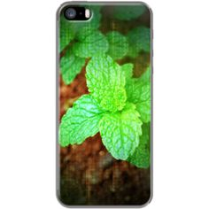 #Freshly By #tropicalsv for Apple #iPhone 5/5s #TheKase