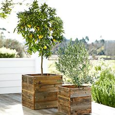 Just realized I could buy ugly planters because they're cheap and then give them a wood facade that looks like this. So cute.