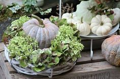 Hottest Pictures Unser Garten im Herbst Style Among the absolute most wonderful and elegant varieties of flowers, we cautiously picked the corresp Halloween Pumpkins, Fall Halloween, Halloween Crafts, Fall Home Decor, Autumn Home, Sweet Home, Fall Arrangements, Pumpkin Centerpieces, Decoration Originale