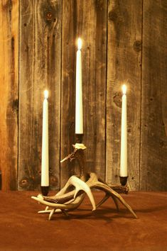Whitetail Deer Antler Candle Holder | Distinctly Montana Gifts