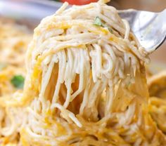 A New Twist On Your Favorite Pasta Dinner! This Easy Recipe Calls For Chicken, Spaghetti Noodles, Cream Of Chicken, Salsa, Sour Cream And . Chicken Spaghetti Recipes, Pasta Recipes, Chicken Recipes, Cooking Recipes, Healthy Recipes, Rice Recipes, Keto Recipes, Spaghetti Dinner, Spaghetti Noodles