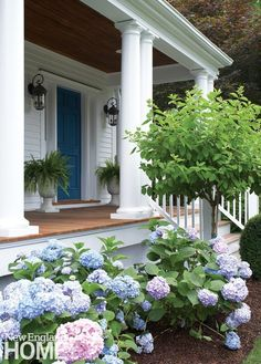Stately ferns on the porch and a ribbon of hydrangeas just below help create an old-time country look.