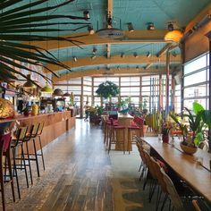 Hotspot: strandtent San Blas in Bloemendaal - One Hand in my Pocket Interior Design Classes, Beach Meals, Amsterdam Netherlands, Beach Club, St Kitts, Restaurant Bar, Caribbean, City, San