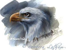 American-Bald-Eagle Eagle Art, Wildlife Nature, Watercolor Animals, Animal Paintings, Bird Art, Spirit Animal, Miniatures, Birds, Drawings