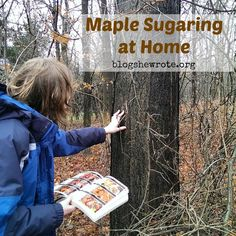 Maple Sugaring is a great way to teach botany, physics, ecology, and history. Learn how to pick your maple and what you need to get started. Science Curriculum, Science Biology, Teaching Biology, Life Science, Activities For Teens, Science Activities, Science Experiments, Biology Projects, Homeschool High School